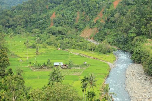 Panorama Sungai Batang Kuranji dari atas headrace